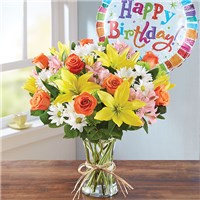 161384xL_HR_fd_3_6_17